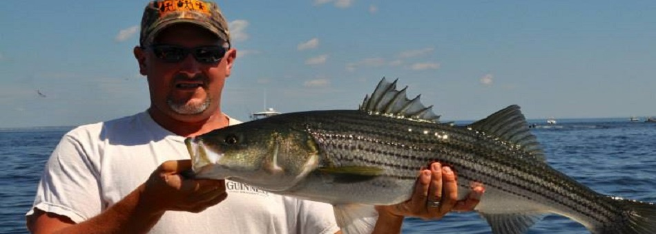 Central new hampshire guides for Deep sea fishing hampton nh